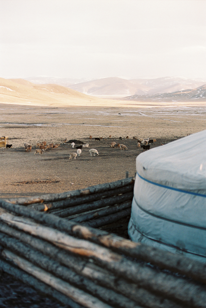 Nicolas-Digard-travel-Photographer-Mongolia-Paris-167